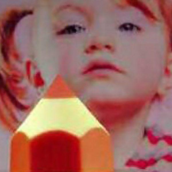 Molde de plástico multi porção crayon