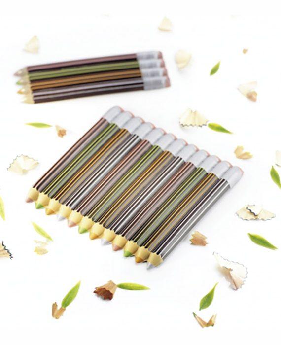 Blister - lápis de cor