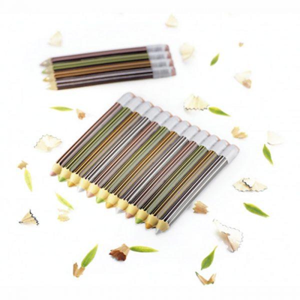 Blister – lápis de cor